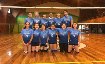 camp_volley